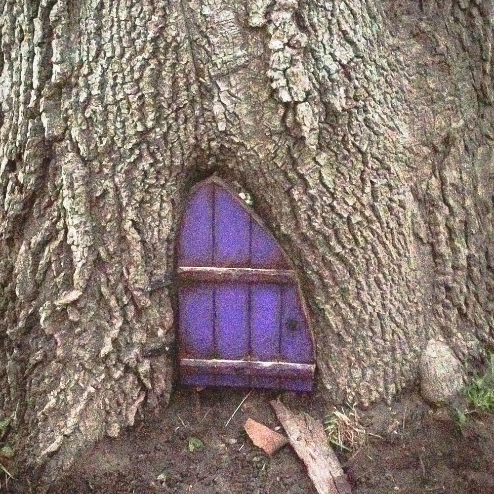 purple_door_f-cellphone.jpg. Purple Door & Firefly Forest