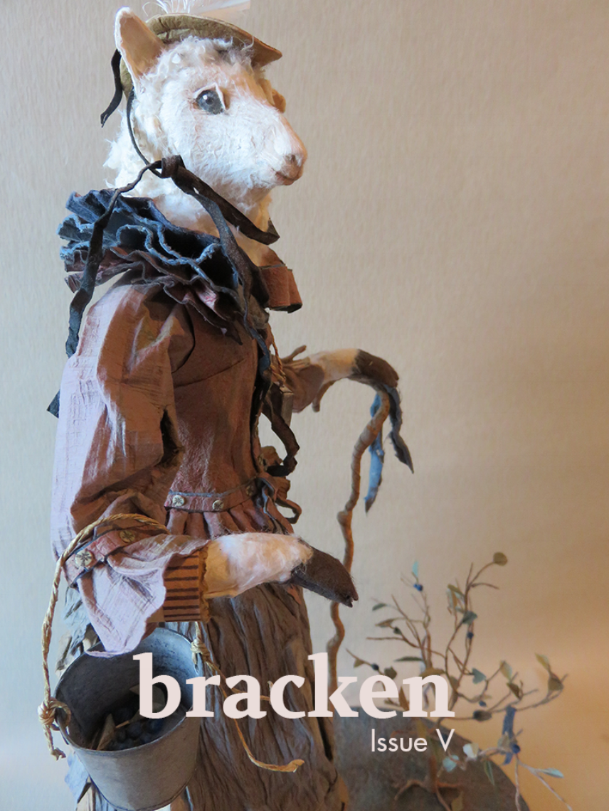 Bracken_IssueV_cover.png