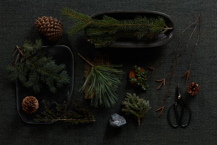 Botanicals_1.jpg