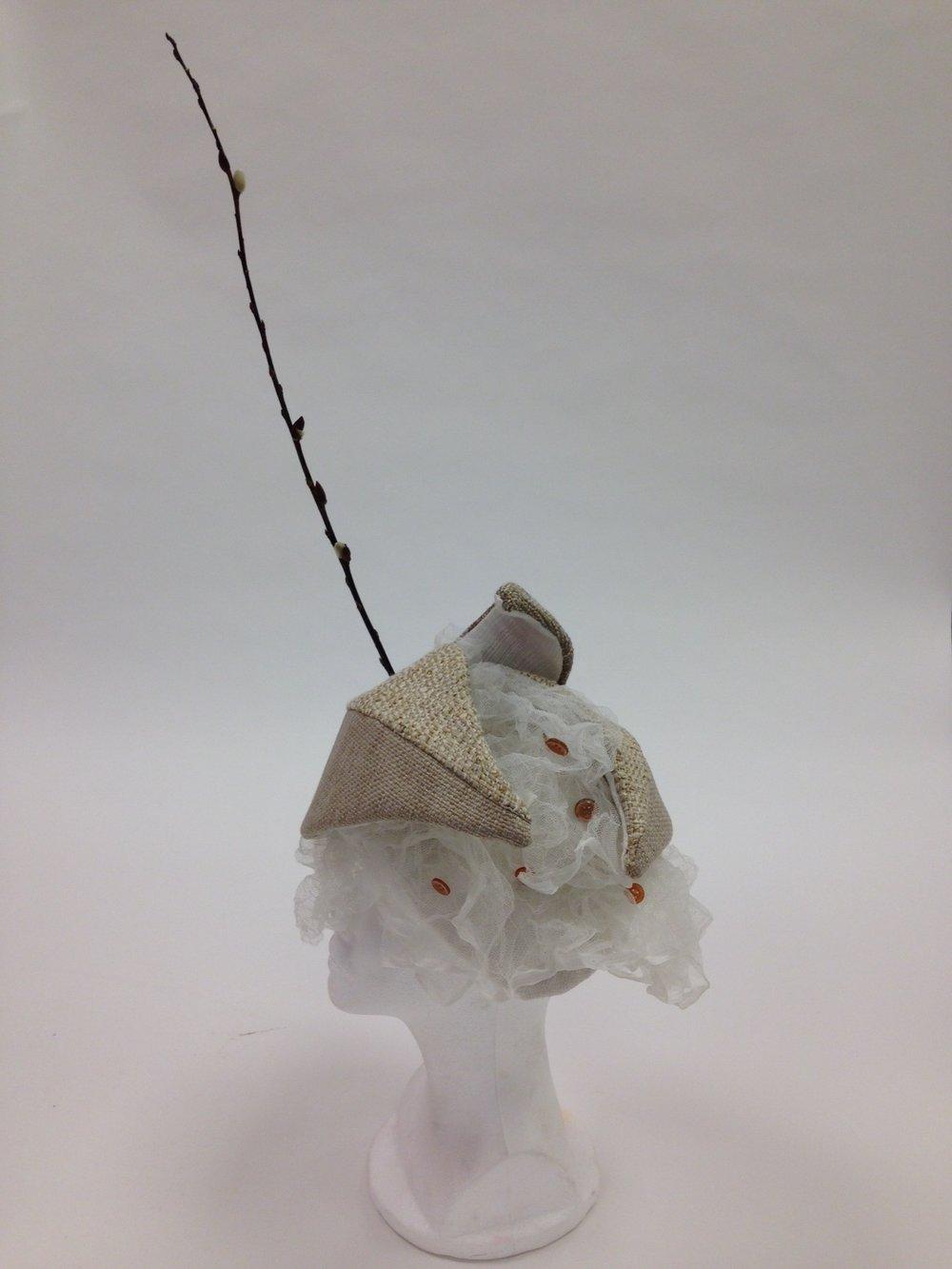 Milkweed Pod.JPG