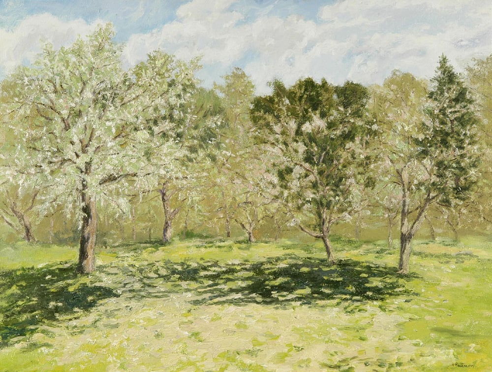 Apple Orchard in May, oil on canvas, 23 x 29 inches