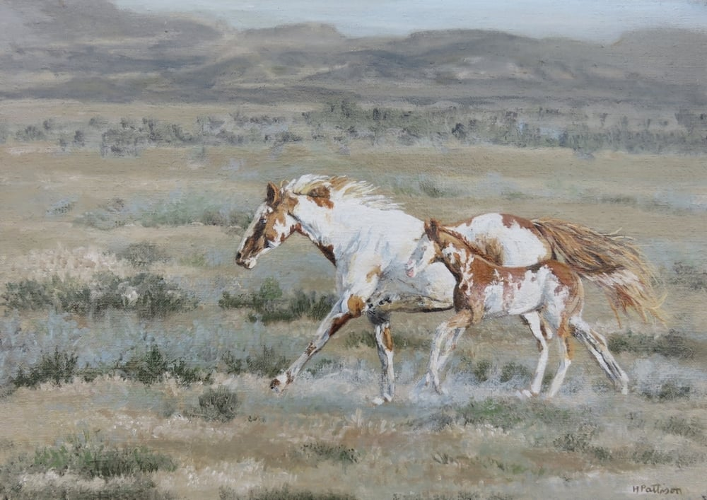 Yellow Paint Mare and Colt, oil on linen, 10 x 14 inches