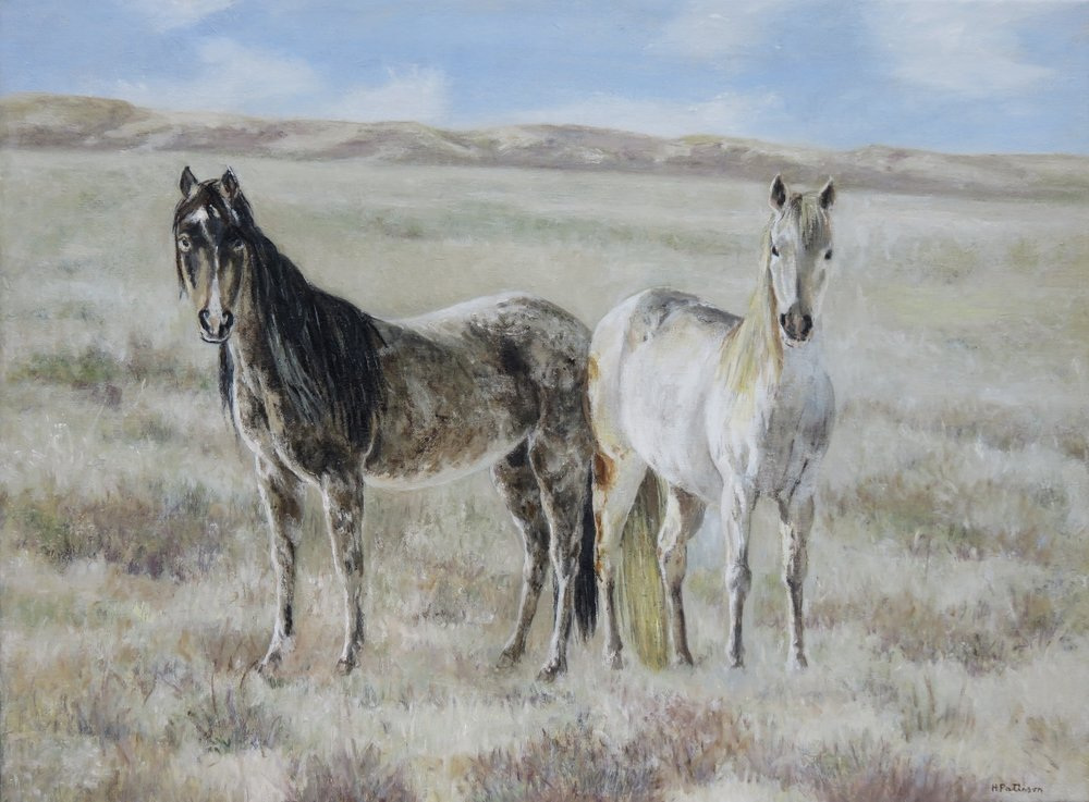 Two Mares in the Desert, oil on linen, 17 x 22.75 inches