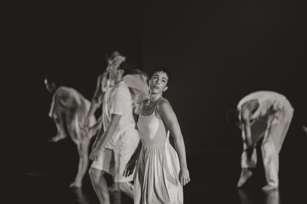 DANCEMAUI2015365.jpg
