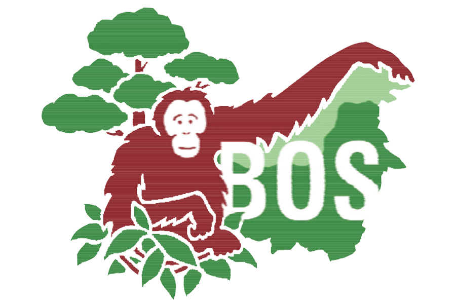 BOSF  Borneo Orangutan Survival Foundation   Visit Website