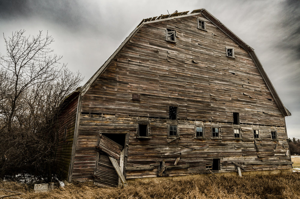 maple_leaf_barn_web_2.jpg