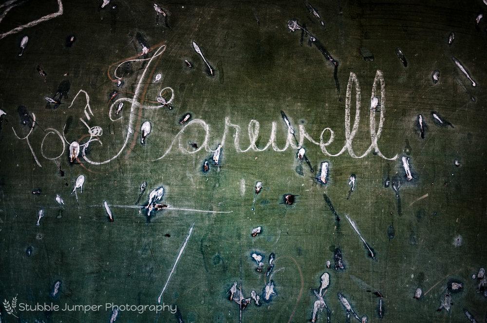rose_lynn_school_farewell_web.jpg