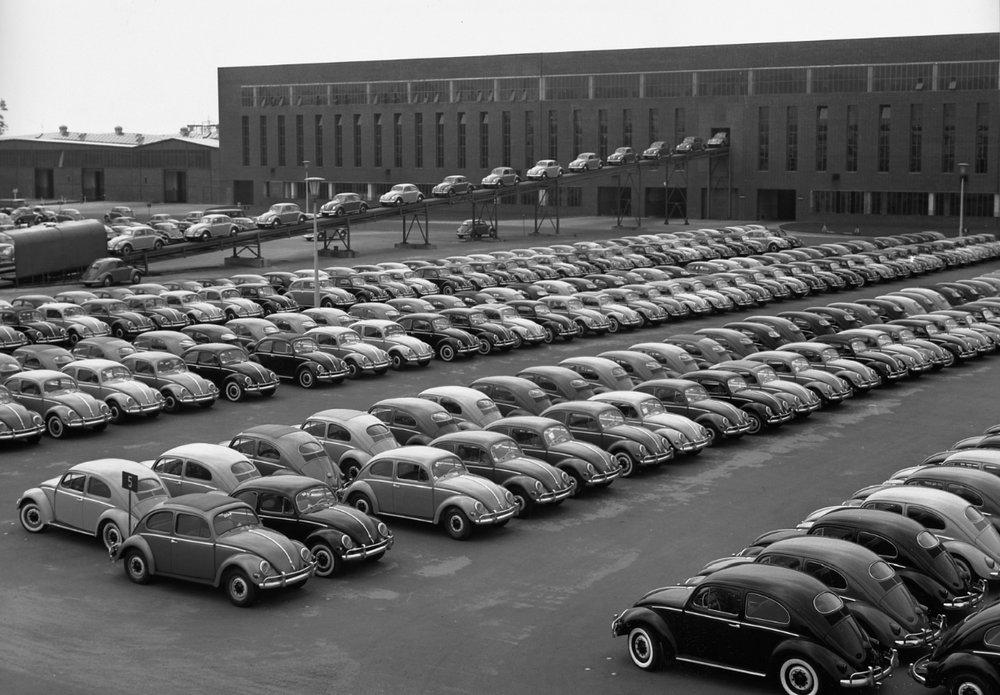 1950s Beetles