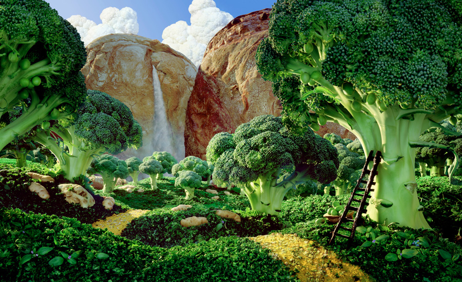 foodscape-broccoli-forest.jpg