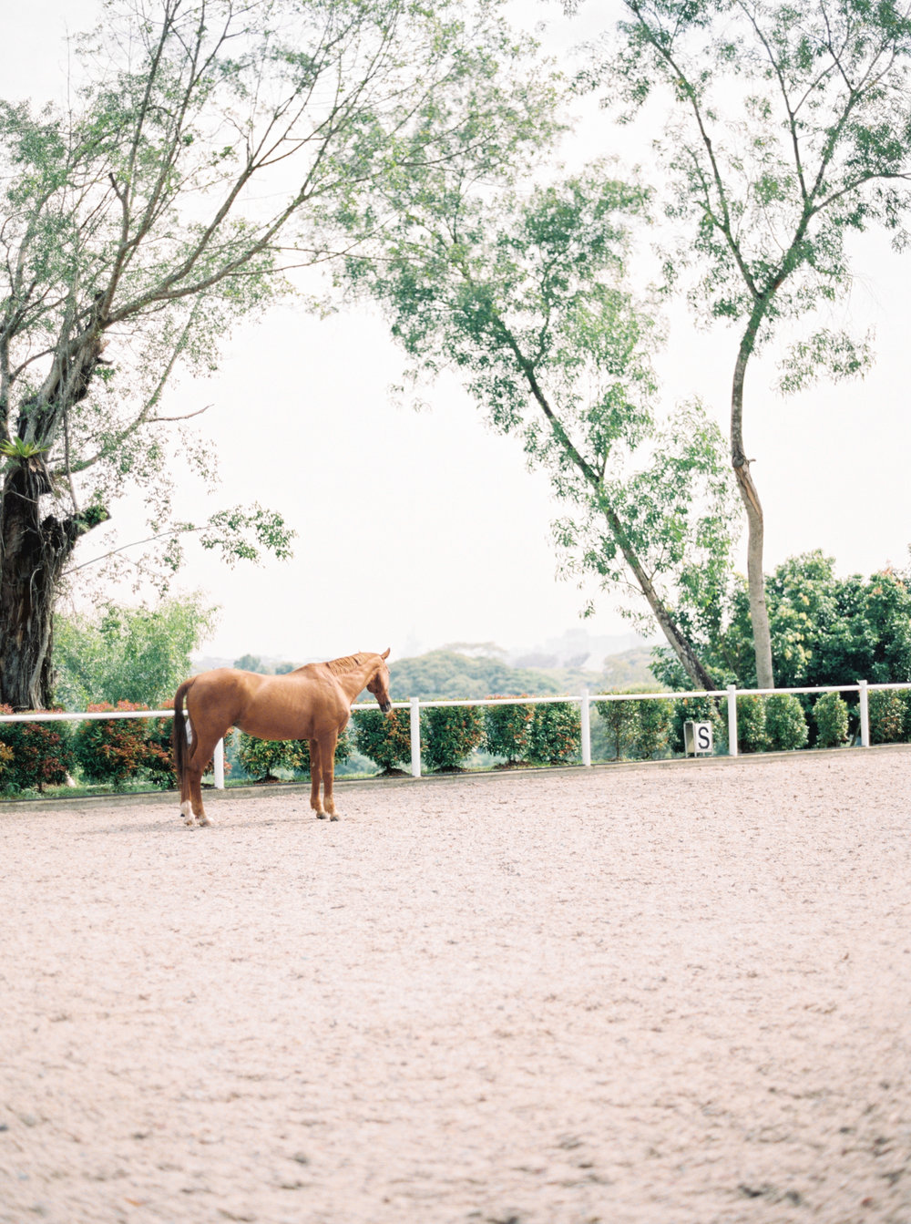 Romantic-Ranch-Elopement-10.jpg