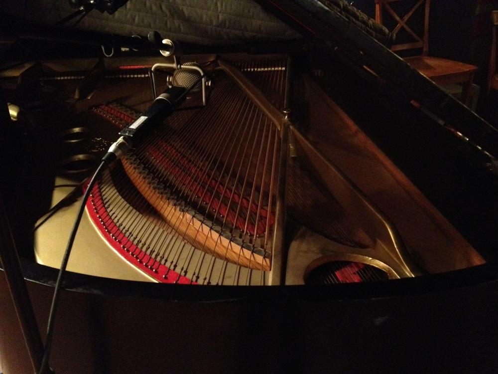 piano guts.jpg