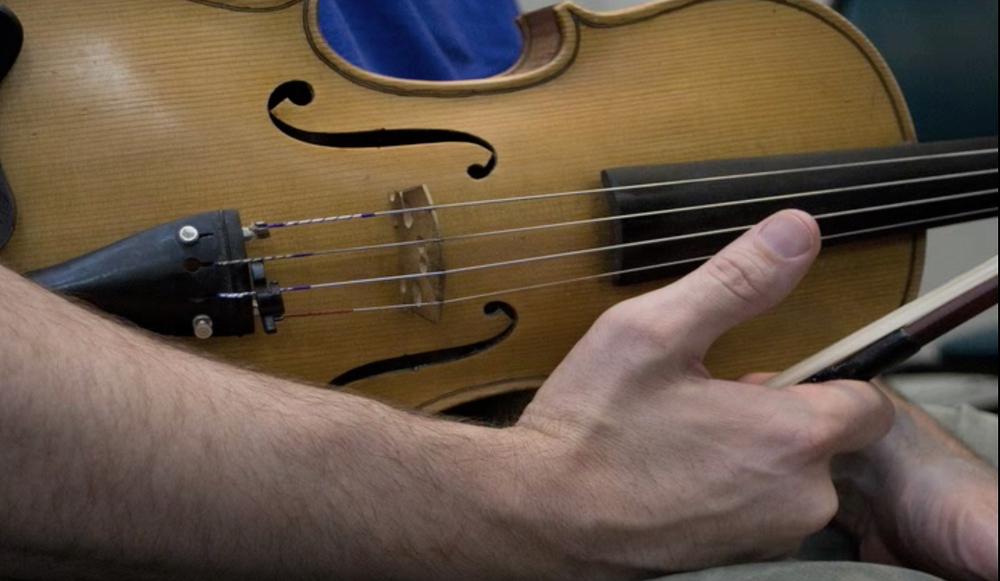 viola 2.jpg