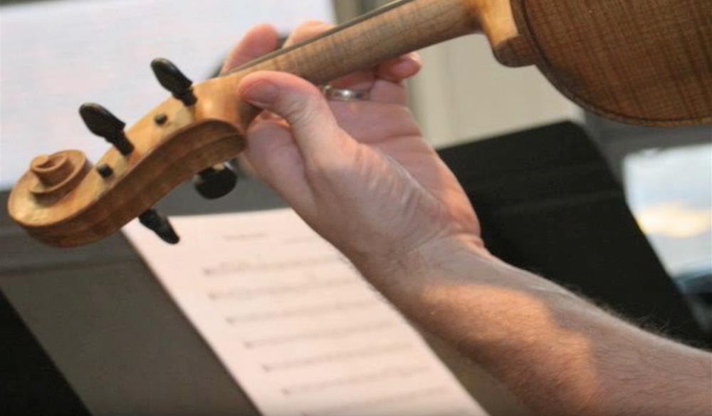 viola hand.jpg