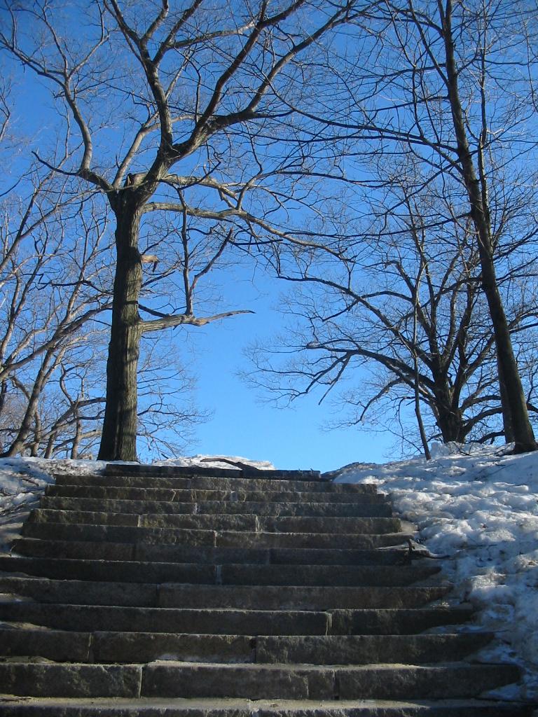 stone stairs11.jpg
