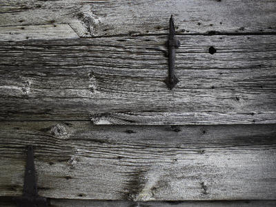 Wood Texture 4