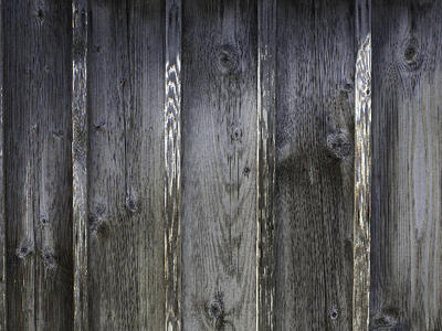 Wood Texture 6