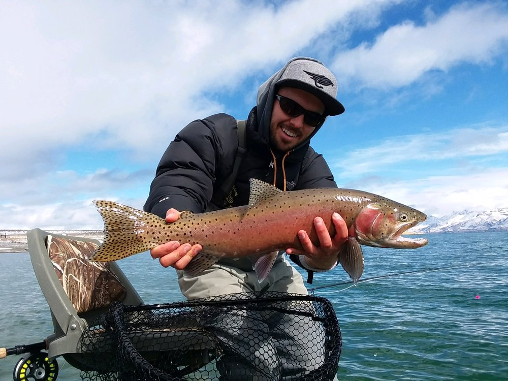 Our luck just kept getting better as the next day we caught several more cutthroat at Pyramid Lake. Each fish more beautiful and even bigger than our last haul! This boys trip was a real success!