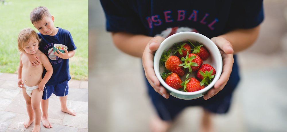 Our first strawberry harvest from our yard.