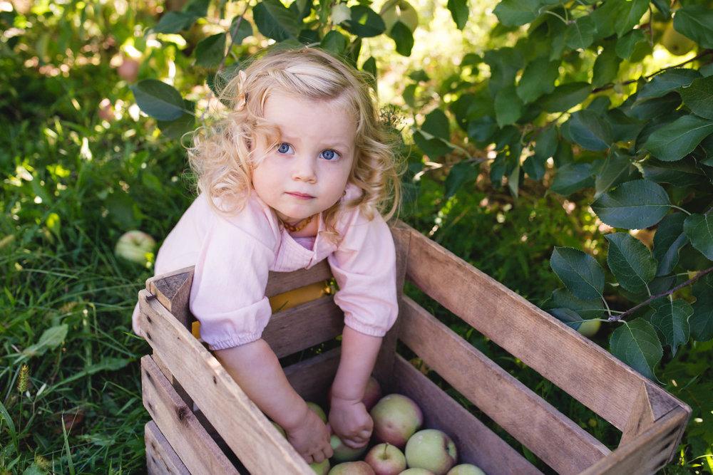 AnneMarie-Hamant-Photography-Lehigh-Valley-Bucks-County-Photographer-53.jpg