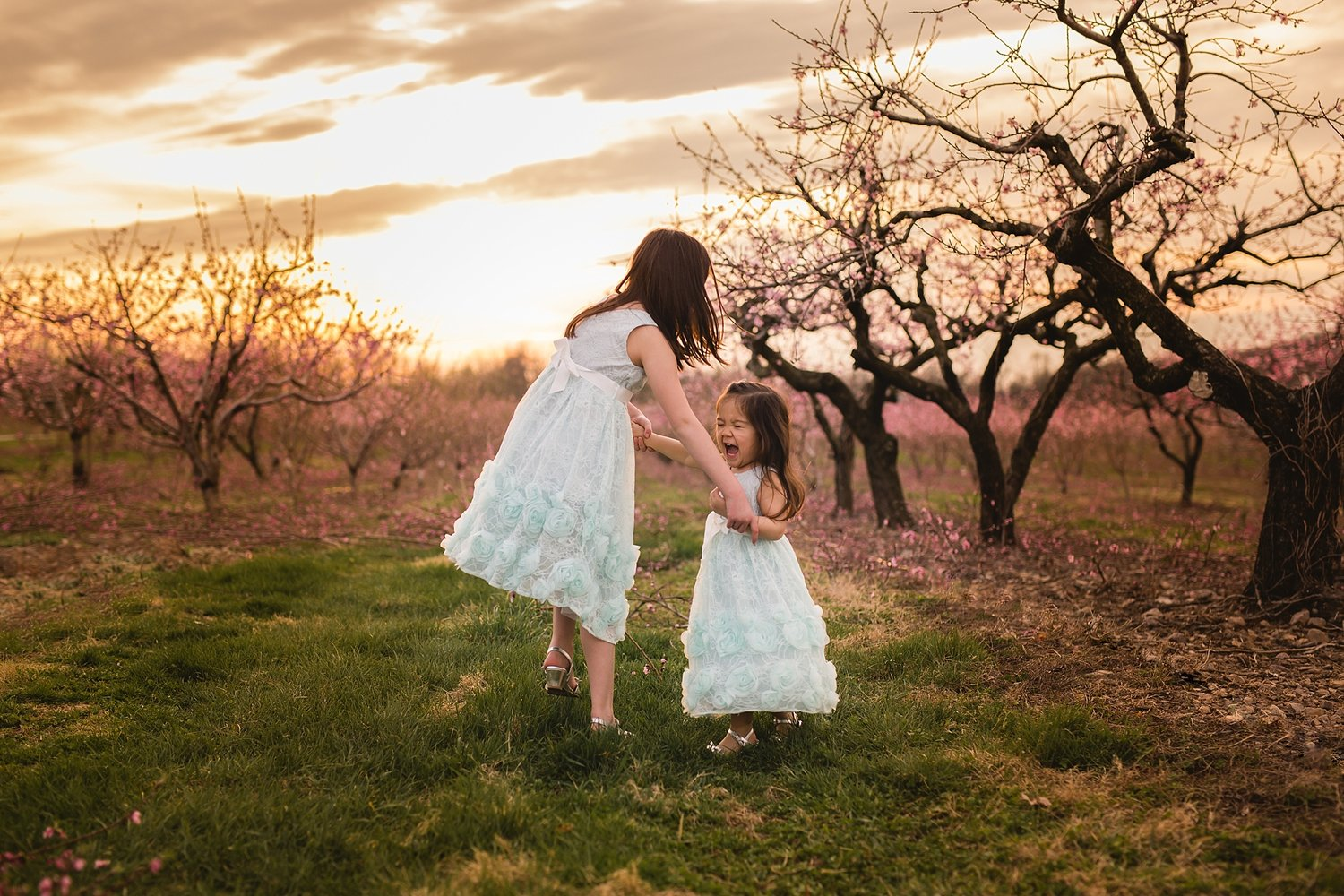 Cherry Blossoms Family Session