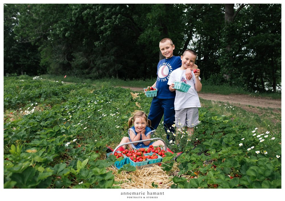 Bucks County Strawberry Picking Child Photographer