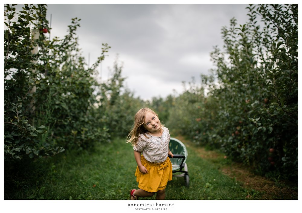 Bucks County Apple Orchard Pictures