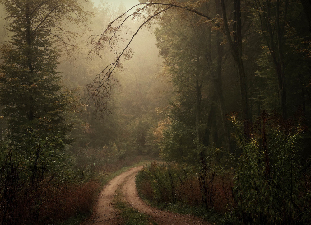 mgły2b-2902.jpg