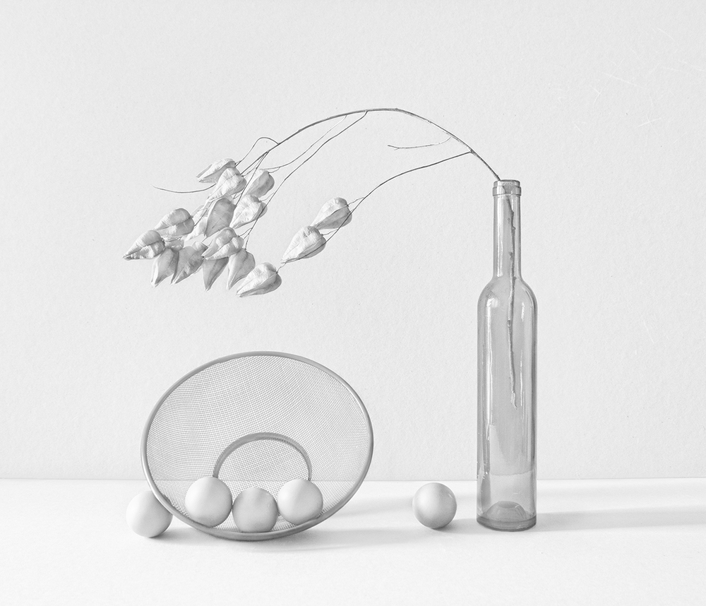 Still life in white.jpg
