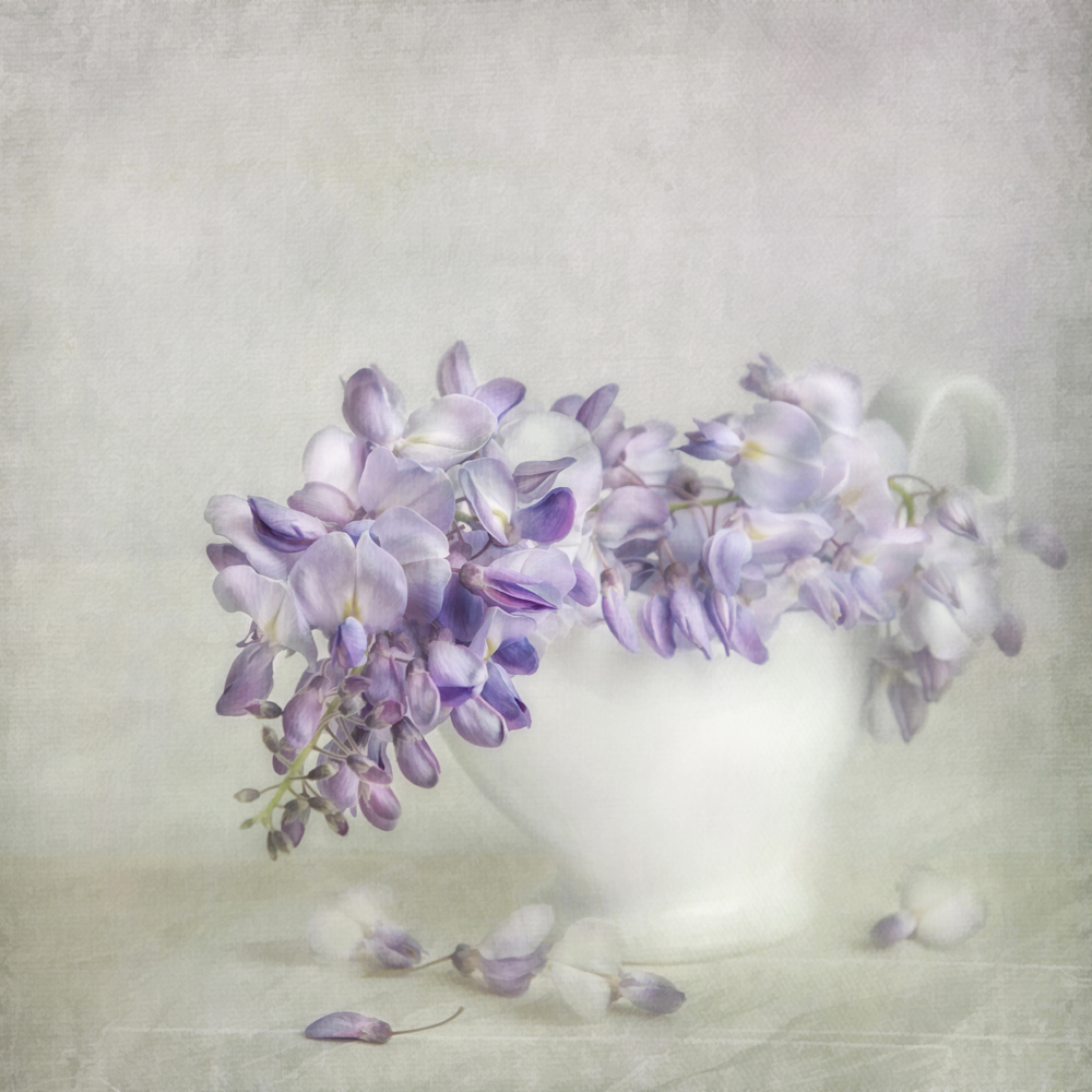 purplerain-LizzyPe.jpg