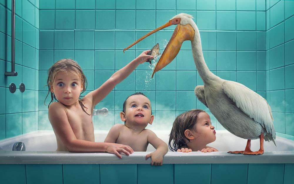 Feeding a stinky pelican.jpg