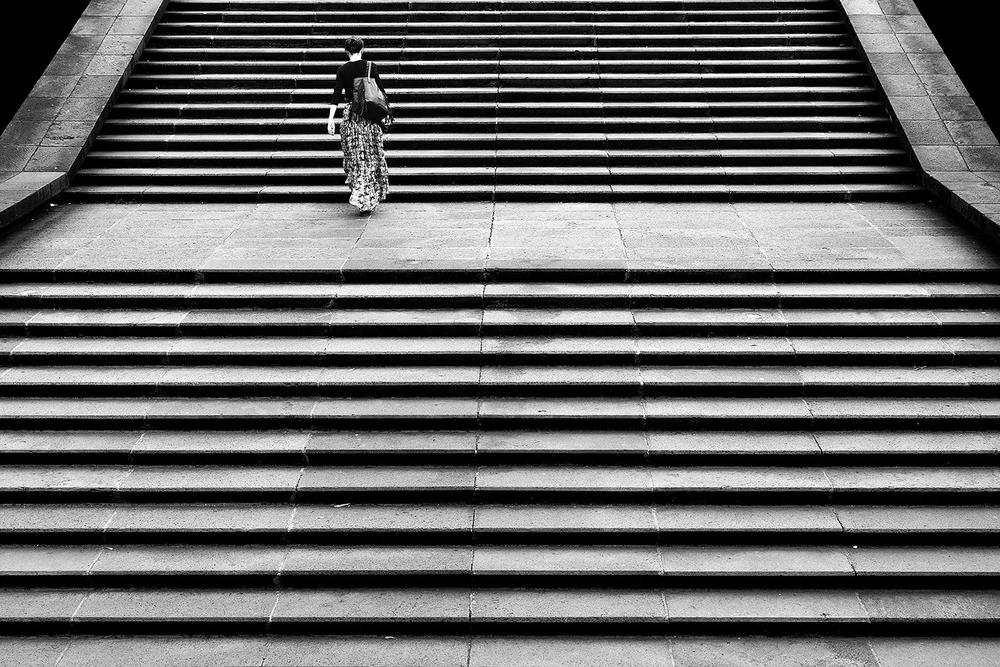 14_zebra_skin.jpg