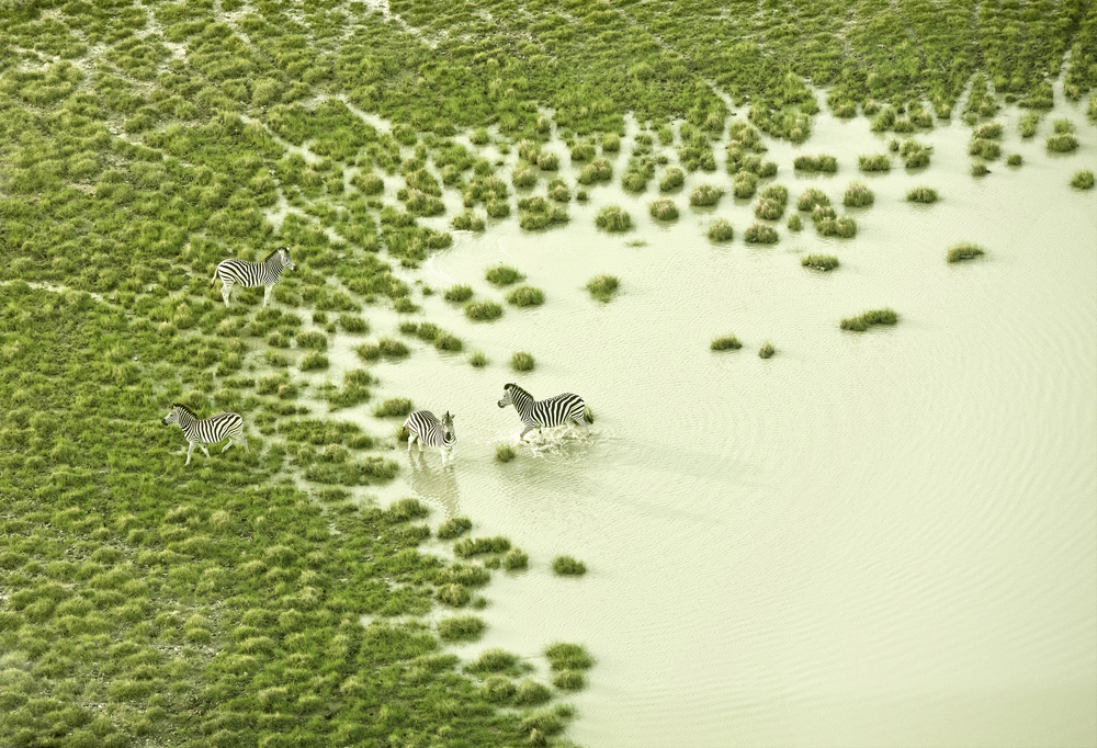 Botswana Bath.jpg