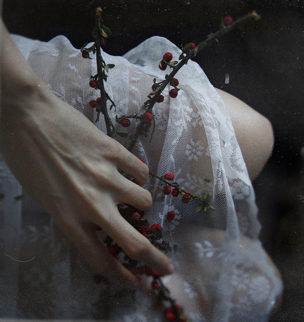 the gardener's girl - laura a. lech.JPG