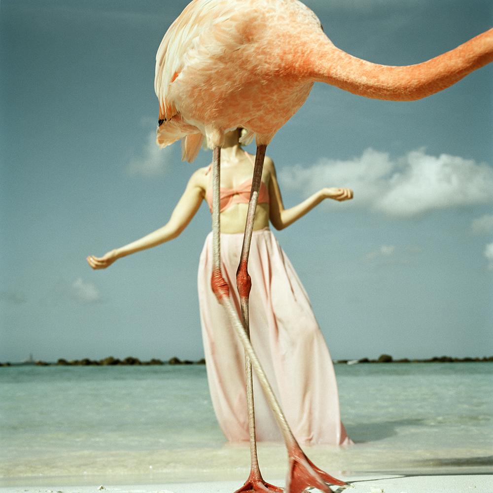 flamingogoed2.jpg
