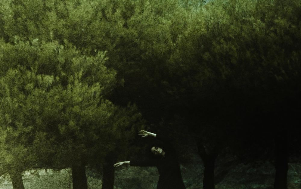 Landscapes9.jpg