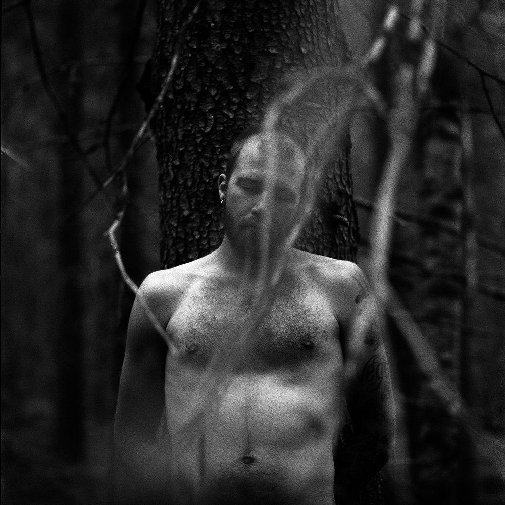 forest_portrait.jpg