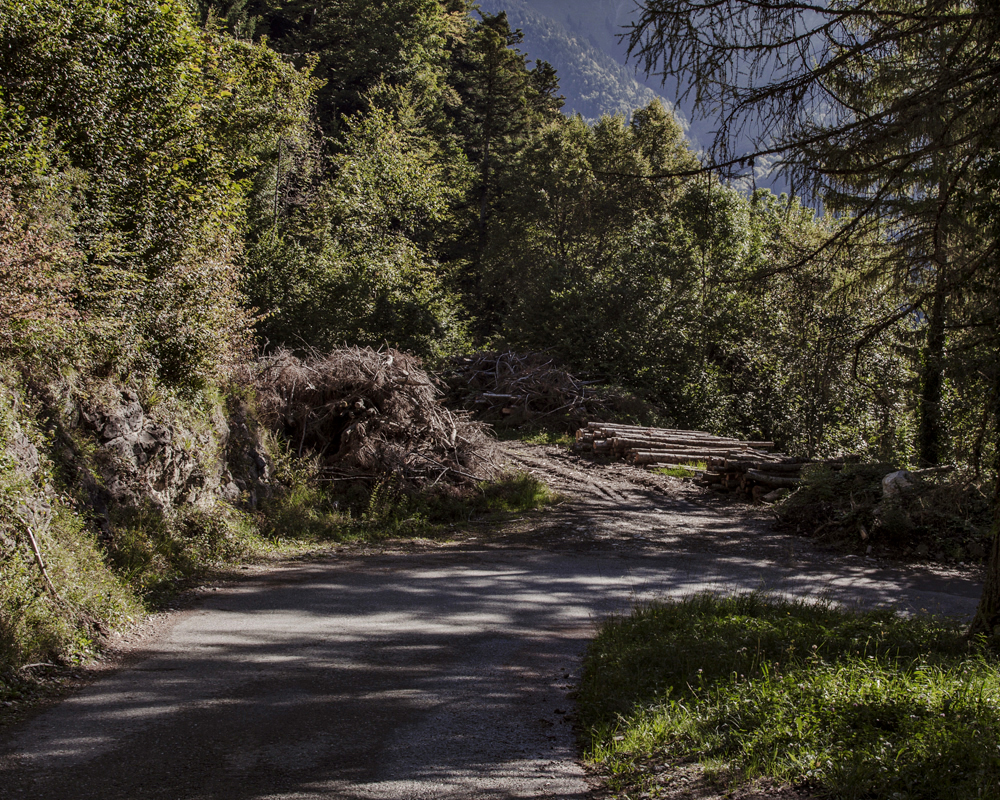 Elsaguillet-Sonchaux_10.jpg