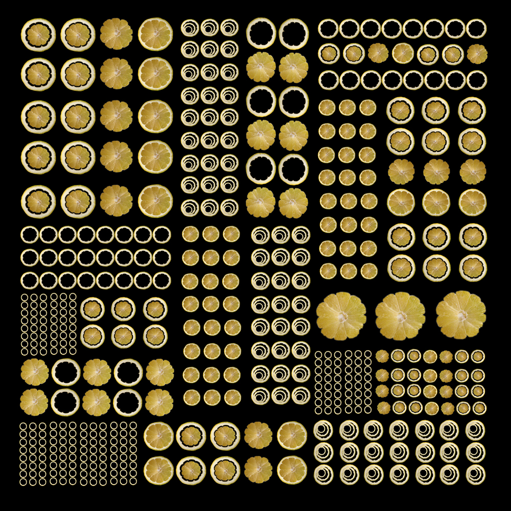 Pattern # Yellow Circle.JPG