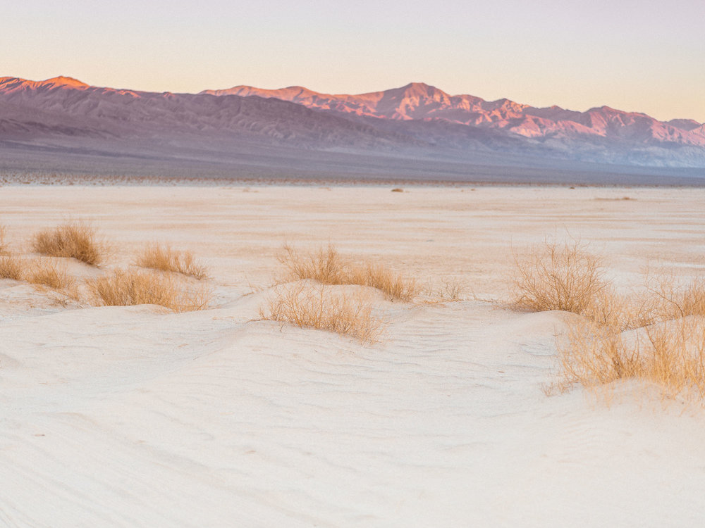 CodyCobb_Mojave-113.jpg