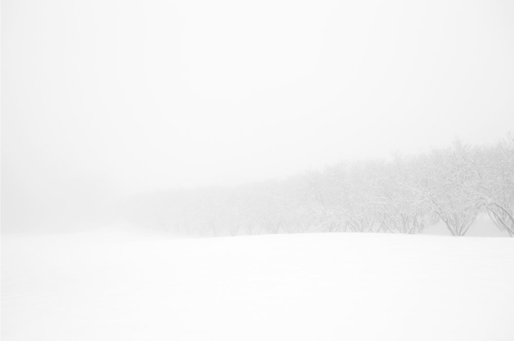 Inverno #6.jpg