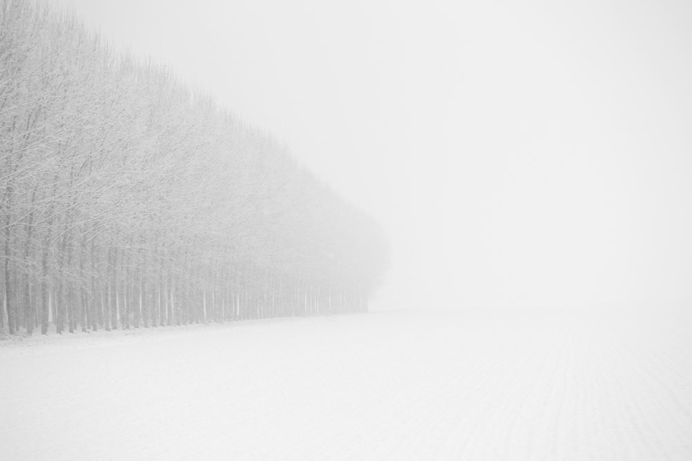 Inverno #4.jpg