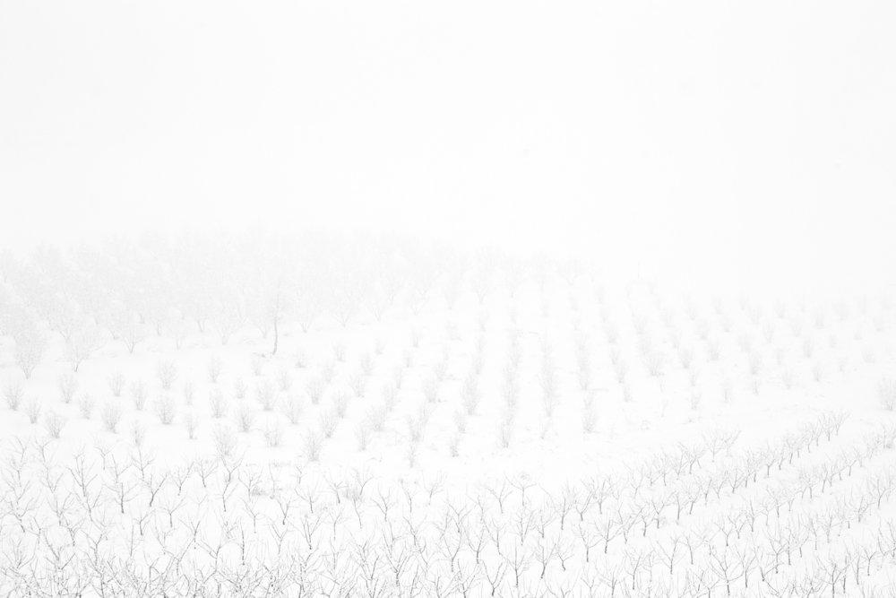 Inverno #7.jpg