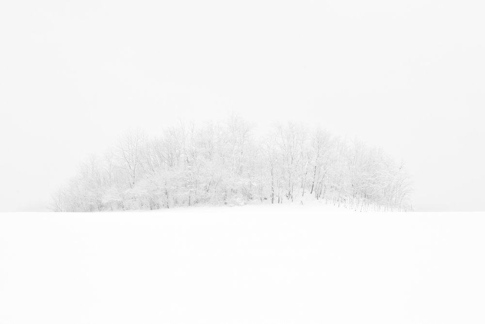 Inverno #17.jpg