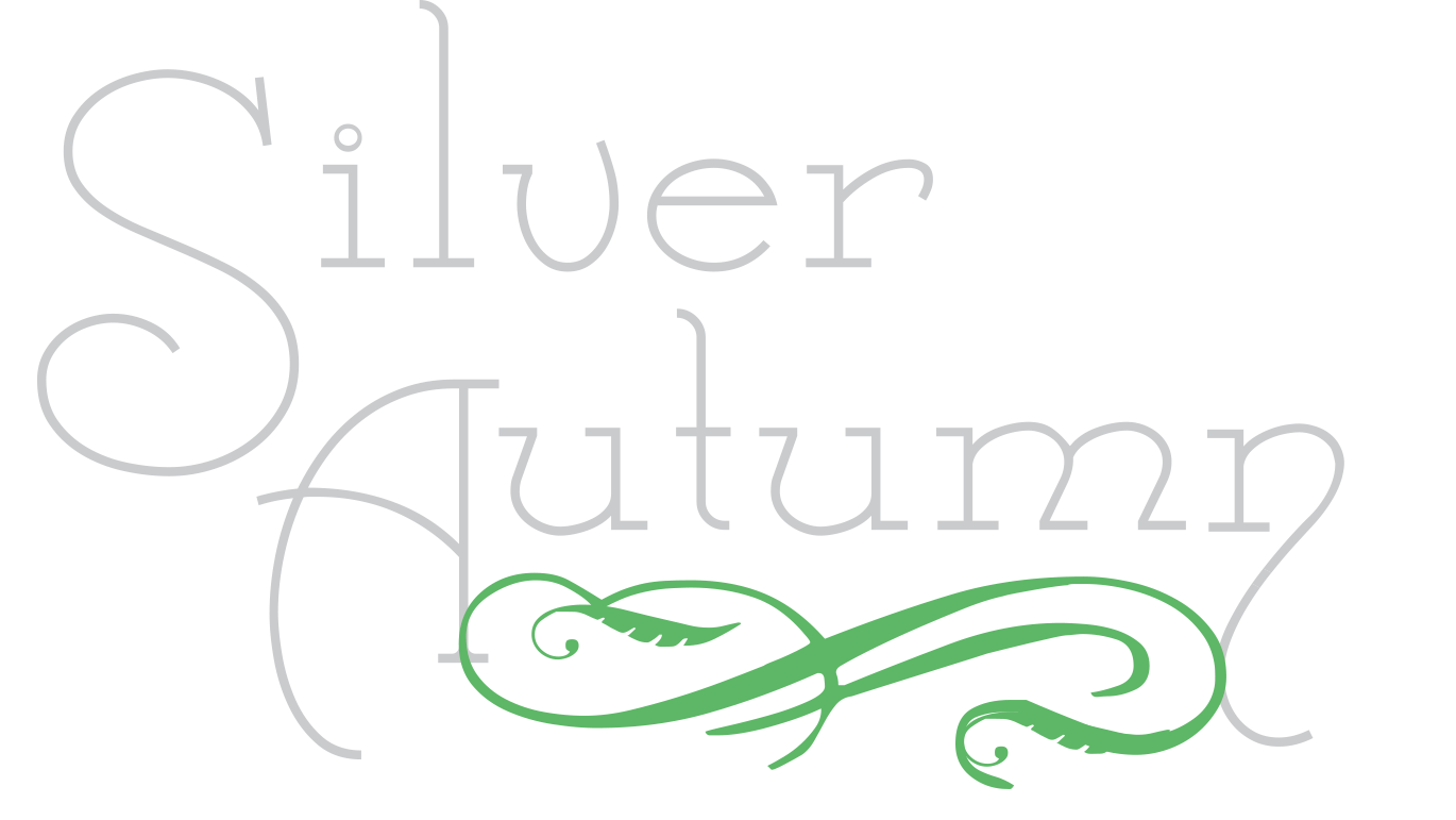 Silver Autumn Media - Videography