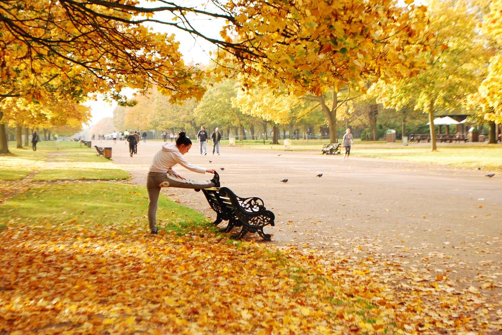 Hyde Park en otoño