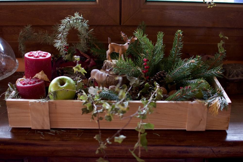 Centro Navidad