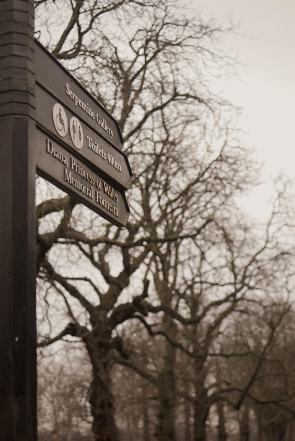Kensington Gardens 3