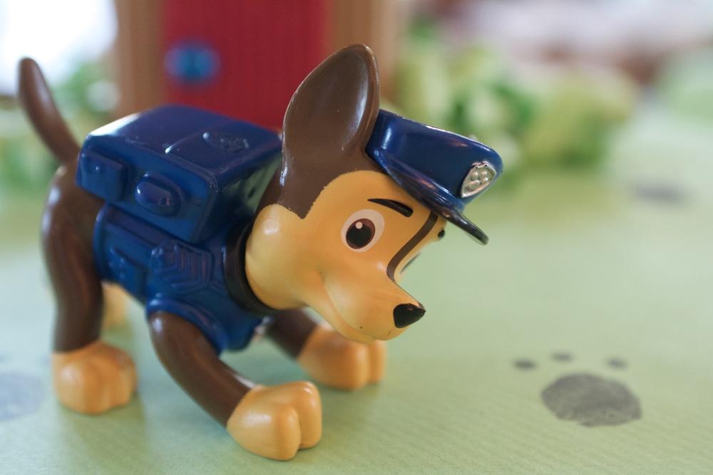 Regalo Patrulla Canina