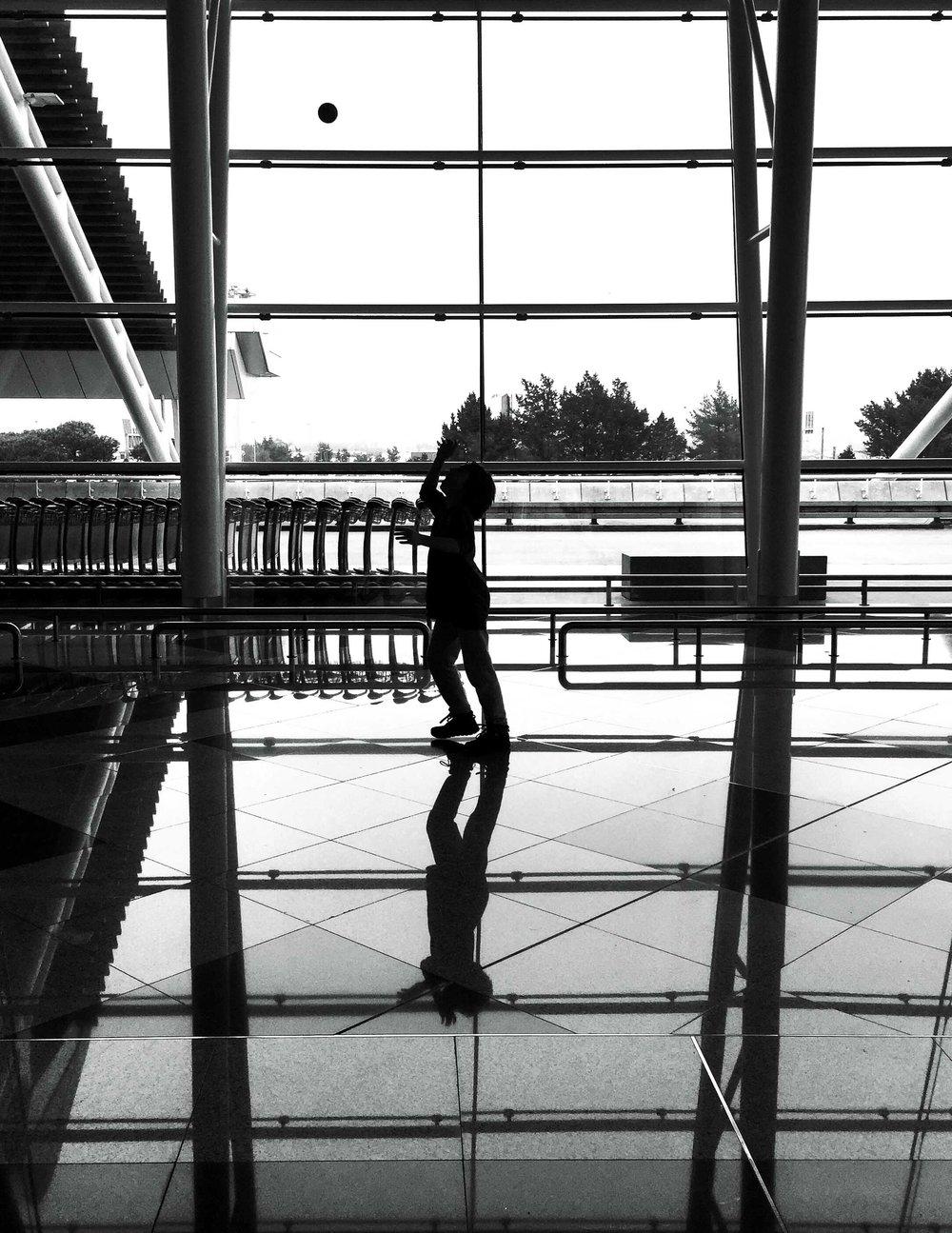 Cabra pequeña jugando en el aeropuerto de Oporto