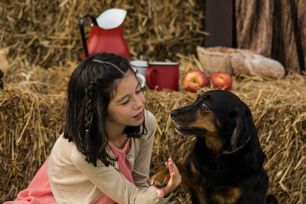 Sesión fotos con mascotas